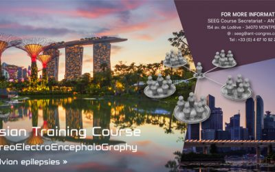3rd Asian Training Course on SteroeElectroEncephaloGraphy, en avril 2019 à Singapour
